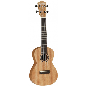 Tanglewood Beginner Concert ukulele with bag